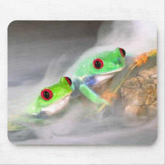Red Eye Treefrog in the mist, Agalychinis 2 Mouse Mat