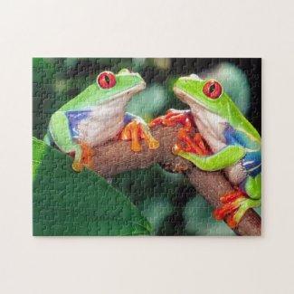 Red Eye Treefrog Pair, Agalychinis callidryas, Jigsaw Puzzle