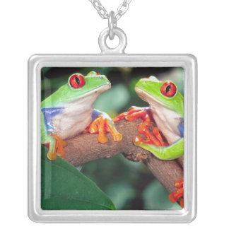Red Eye Treefrog Pair, Agalychinis callidryas, Silver Plated Necklace
