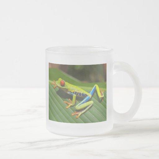 Red Eyed Green Tree Frog Mug