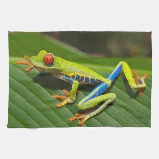 Red Eyed Green Tree Frog Tea Towel