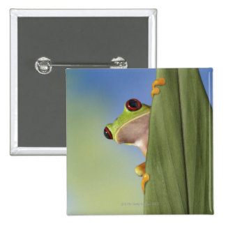 Red Eyed Tre Frog Peeking From Behind a Leaf 15 Cm Square Badge