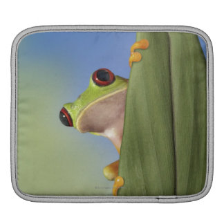 Red Eyed Tre Frog Peeking From Behind a Leaf iPad Sleeves