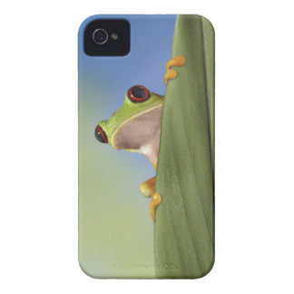 Red Eyed Tre Frog Peeking From Behind a Leaf iPhone 4 Cover