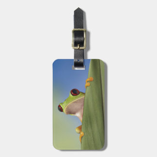 Red Eyed Tre Frog Peeking From Behind a Leaf Luggage Tag