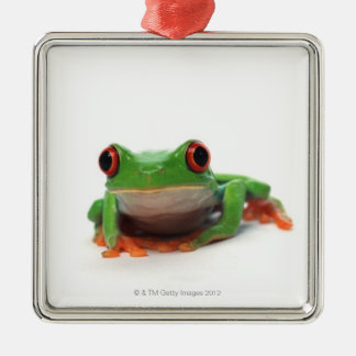 Red eyed tree frog 2 christmas ornament