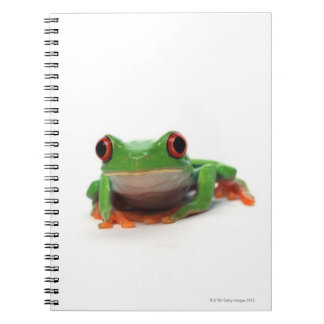 Red eyed tree frog 2 spiral notebooks