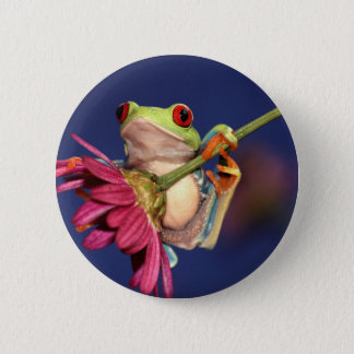red eyed tree frog 6 cm round badge
