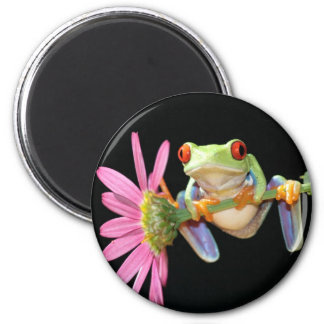 red eyed tree frog 6 cm round magnet