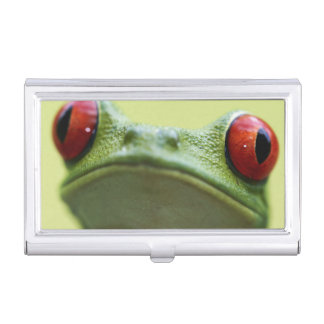 Red-eyed tree frog (Agalychnis callidryas) 2 Business Card Case