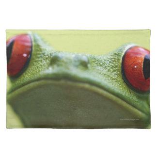 Red-eyed tree frog (Agalychnis callidryas) 2 Placemat