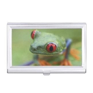 Red-eyed tree frog (Agalychnis callidryas) Business Card Holder