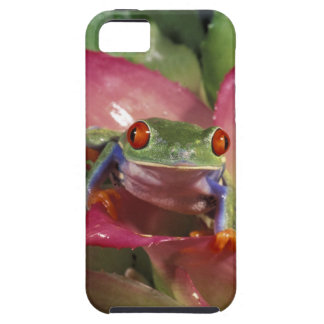 Red-eyed tree frog Agalychnis callidryas) Case For The iPhone 5