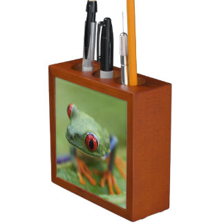 Red-eyed tree frog (Agalychnis callidryas) Desk Organiser