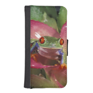 Red-eyed tree frog Agalychnis callidryas) iPhone SE/5/5s Wallet Case