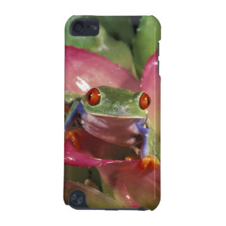 Red-eyed tree frog Agalychnis callidryas) iPod Touch 5G Cover