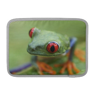 Red-eyed tree frog (Agalychnis callidryas) MacBook Sleeve