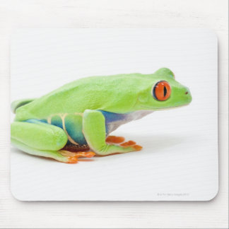 Red-Eyed Tree Frog (Agalychnis Callidryas) Mouse Pad