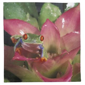 Red-eyed tree frog Agalychnis callidryas) Napkin