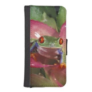 Red-eyed tree frog Agalychnis callidryas) iPhone 5 Wallet Case