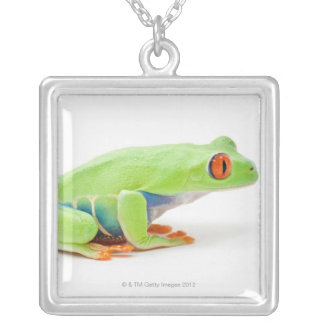 Red-Eyed Tree Frog (Agalychnis Callidryas) Silver Plated Necklace