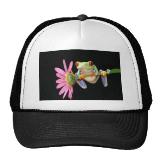 red eyed tree frog cap