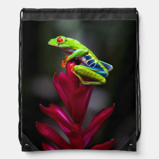Red-eyed Tree Frog Drawstring Bag