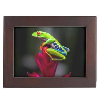 Red-eyed Tree Frog Keepsake Box