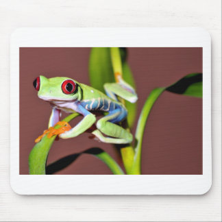 red eyed tree frog mouse mat