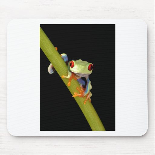 red eyed tree frog mouse pad