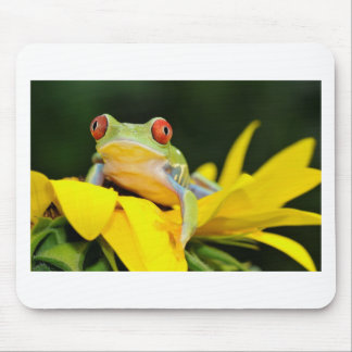 red eyed tree frog mousepads