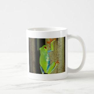 red-eyed tree frog basic white mug
