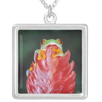 Red-Eyed Tree Frog on Leaf Silver Plated Necklace