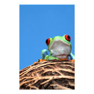 red eyed tree frog personalized stationery