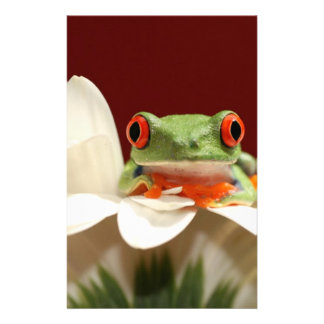 red eyed tree frog stationery paper