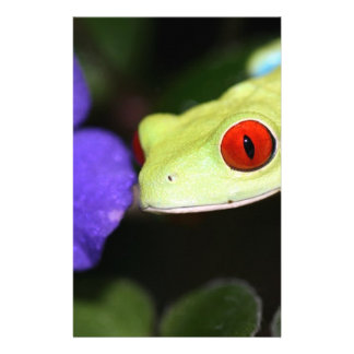 red eyed tree frog customized stationery