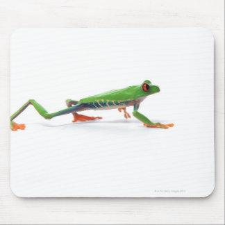 Red eyed tree frog walking mouse mat