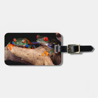 Red Eyed Tree Frogs Luggage Tag