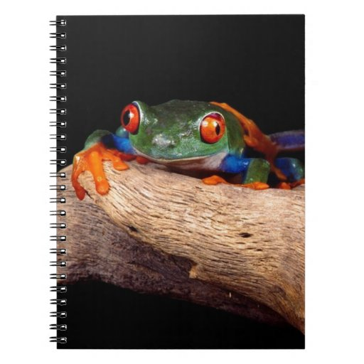 Red Eyed Tree Frogs Note Book