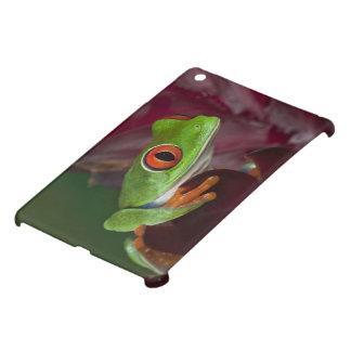 Red-eyed treefrog iPad mini covers