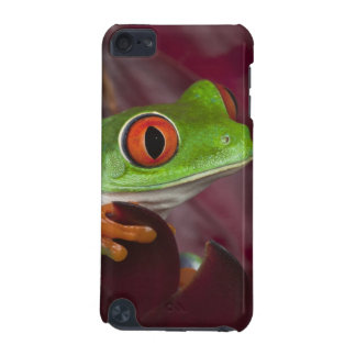 Red-eyed treefrog iPod touch 5G case