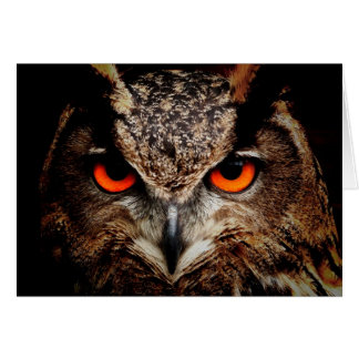 Red Eyes Eagle Owl Card