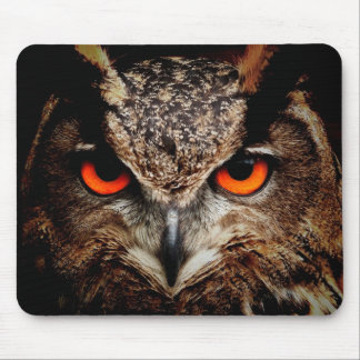 Red Eyes Eagle Owl Mouse Pad