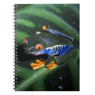 Red Eyes Frog On Leaf Spiral Notebook