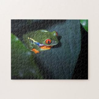 Red Eyes Frog Sitting Jigsaw Puzzle