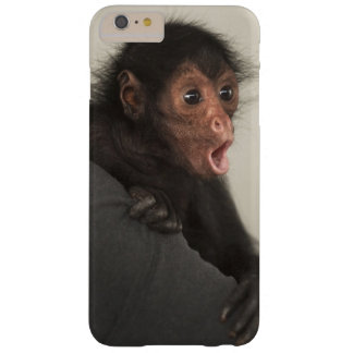Red-faced Spider Monkey Ateles paniscus) Barely There iPhone 6 Plus Case