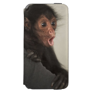 Red-faced Spider Monkey Ateles paniscus) Incipio Watson™ iPhone 6 Wallet Case