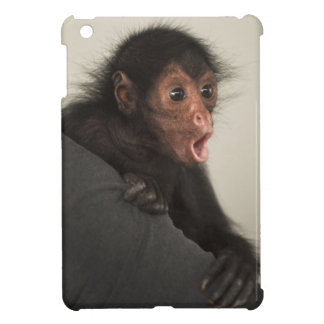 Red-faced Spider Monkey Ateles paniscus) iPad Mini Cases