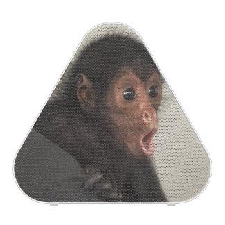 Red-faced Spider Monkey Ateles paniscus) Speaker