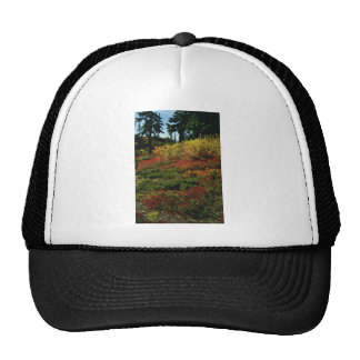 Red Fall in the Cascades flowers Trucker Hats